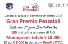Gran Premio Pezzaioli, 100 piattelli a scorrere F.O.